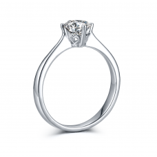 0.50 Carat E SI1 (With Ring Casing)